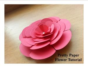 cover flower photo